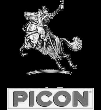 picon2
